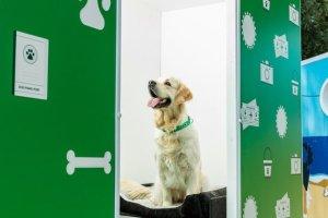 Cabina de fotomatón para perros