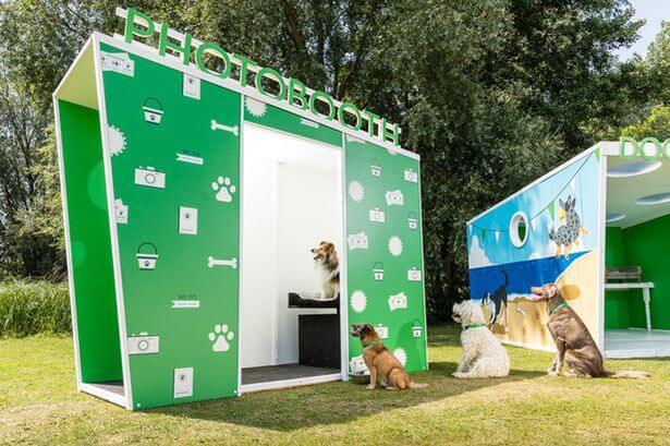 Cabina de fotomatón para pasaporte perros